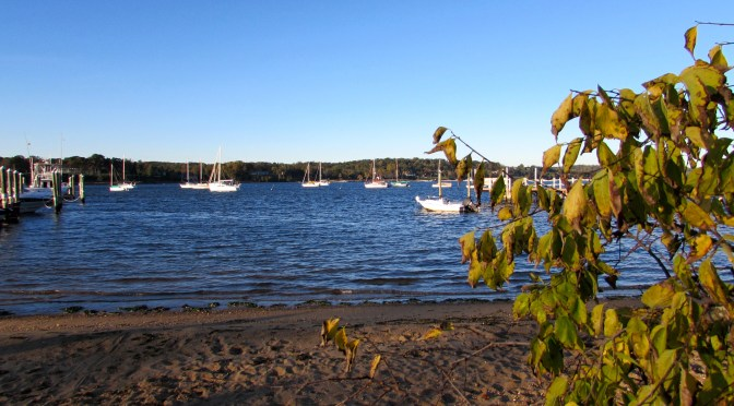 Park to Keep Riverfront Space Open in Fair Haven