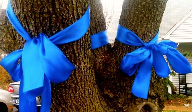 Sea of Blue Extends to Show of Support for Local Police