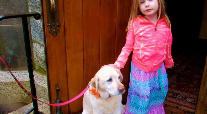 Don't Forget: Dog Days at Church