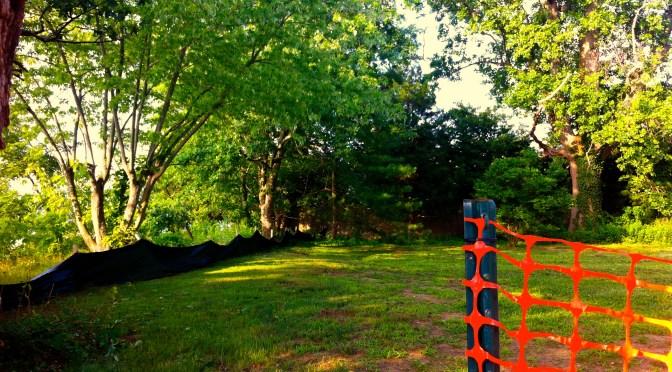 Fair Haven: DeNormandie Park Stalled