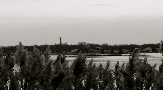 Focus: Black & White Winter on the River