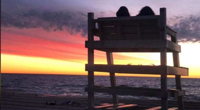 Simple Summer: Guarding a Sea Bright Dawn with a Friend