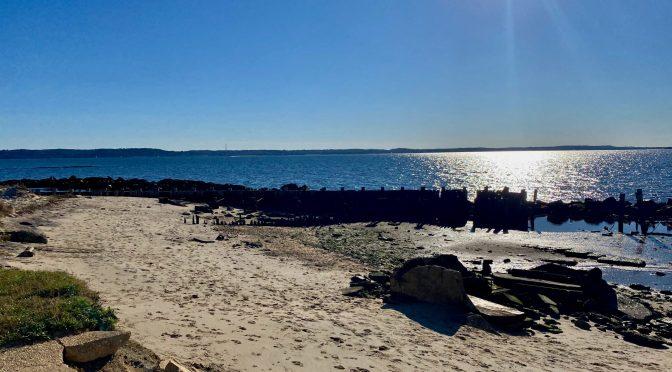 Focus: Shore View & Week Ahead FYI