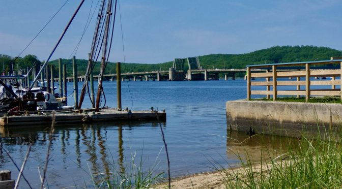 Focus: A Barnacle's River View