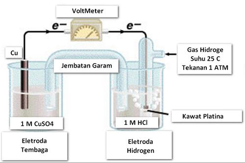 potensial elektrode standard