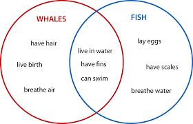 diagram venn dan contoh soal