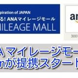 Amazon利用時はANAマイレージモール経由でマイルを貯めよう!