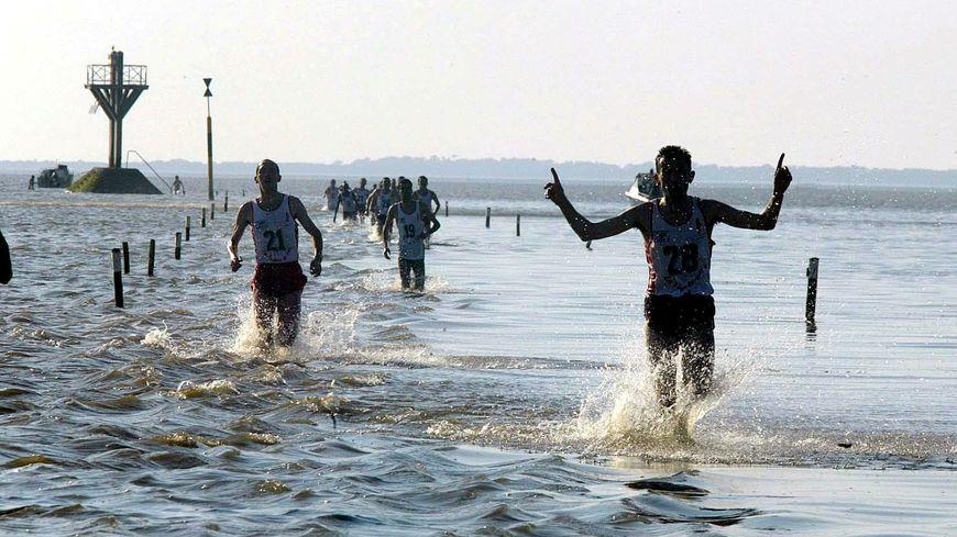 Foulée du Gois 2019 à Noirmoutier, la course contre la mer!