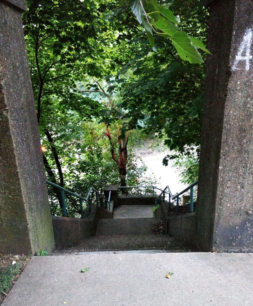 Ewart Steps