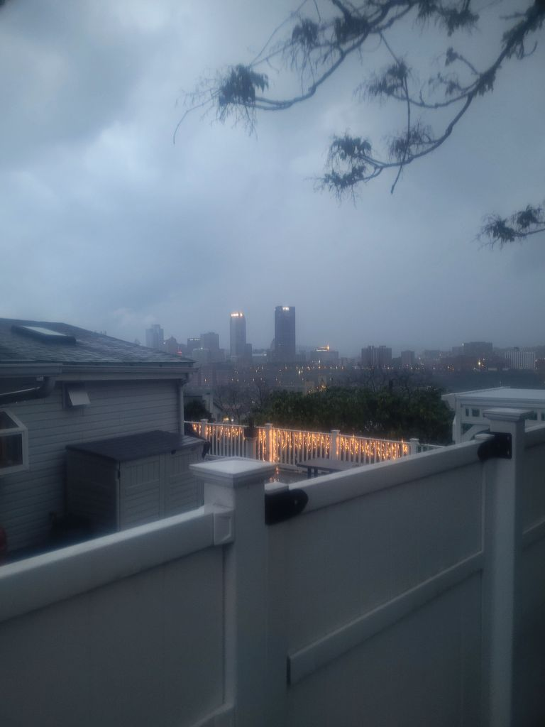 Downtown Pittsburgh from South Side Slopes in storm