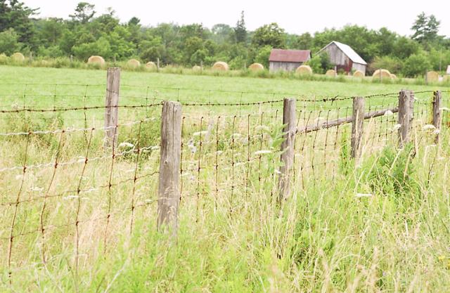 establishing a new farm where to start