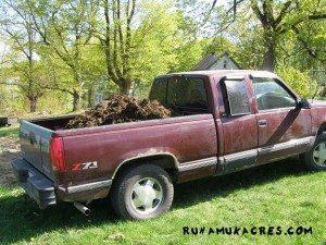 goat manure for the garden