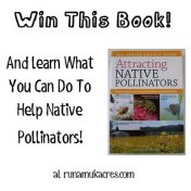 native pollinator book giveaway