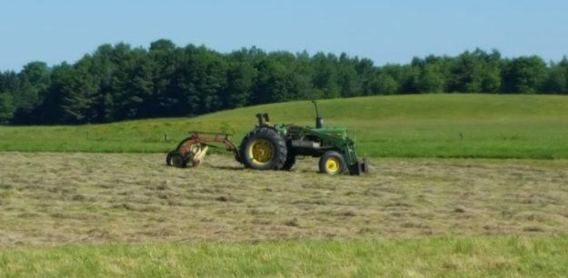 bee-friendly rotational field mowing
