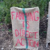 maine local food movement
