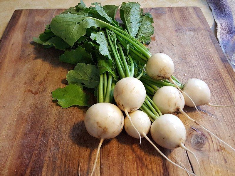 fast-growing-vegetables