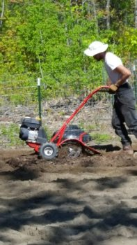 tilling the sand