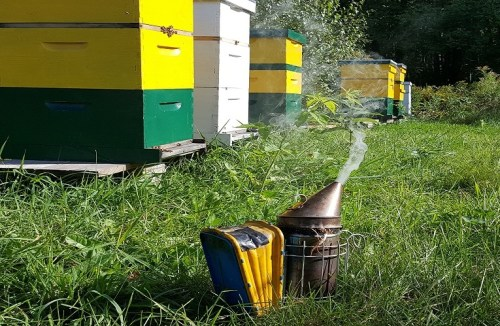 runamuk acres farm and apiary