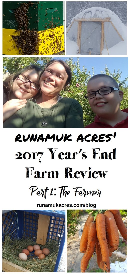 years end review 2017