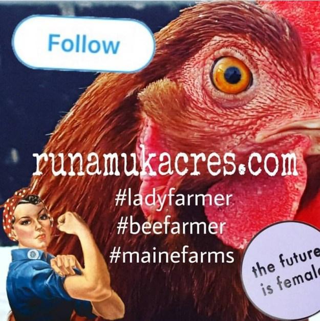 follow runamuk