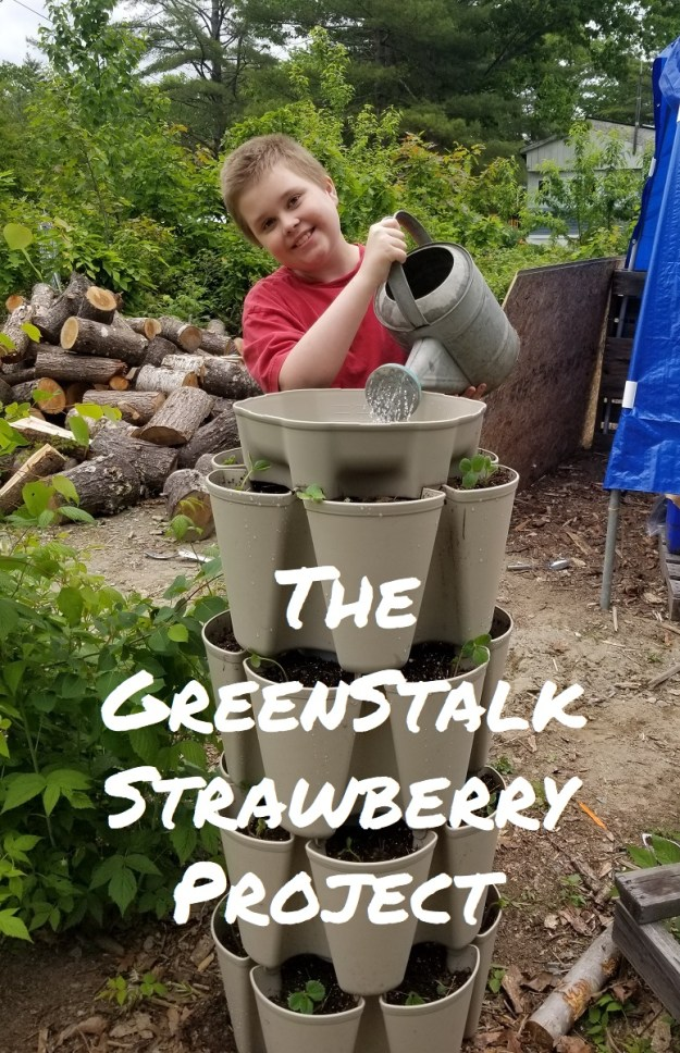 greenstalk project