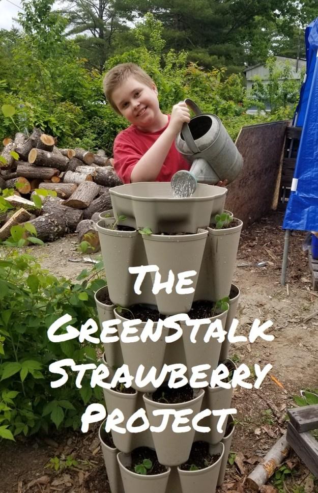 greenstalk project
