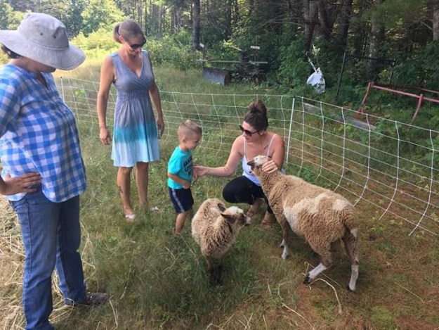 open farm day_2019