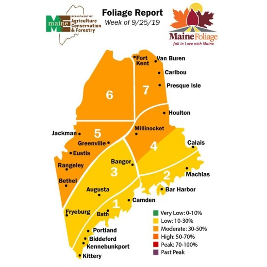 maine foliage report