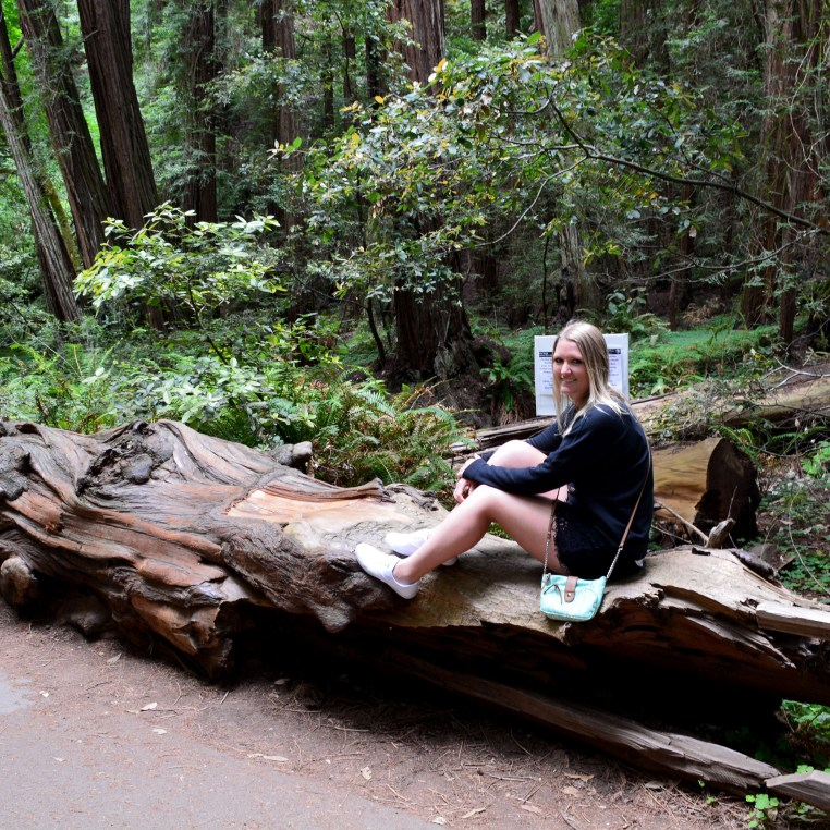Sarah sitting on a fallen tree in a forest