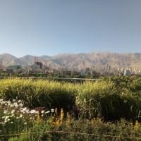 Tehran: Salom, Iran