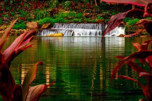 The Lagoon at Mambukal Resort