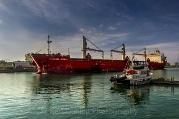 VanLife - Port Colborne Ontario