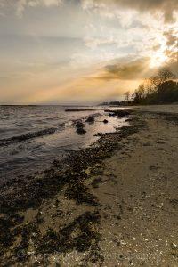 VanLife - Waverly Beach Park