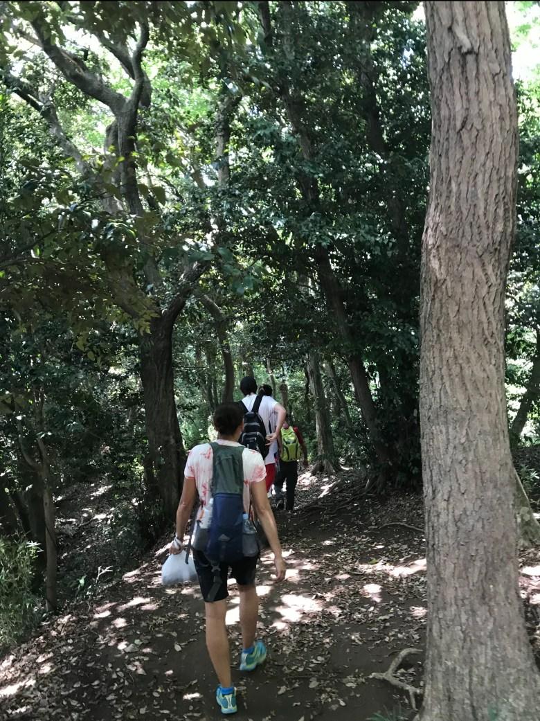 Hiking in Kamakura
