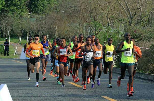 10 Random facts that will Make You a Marathon Expert