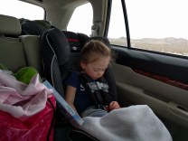 All tired out from a weekend of racing.