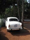 India.2010 036