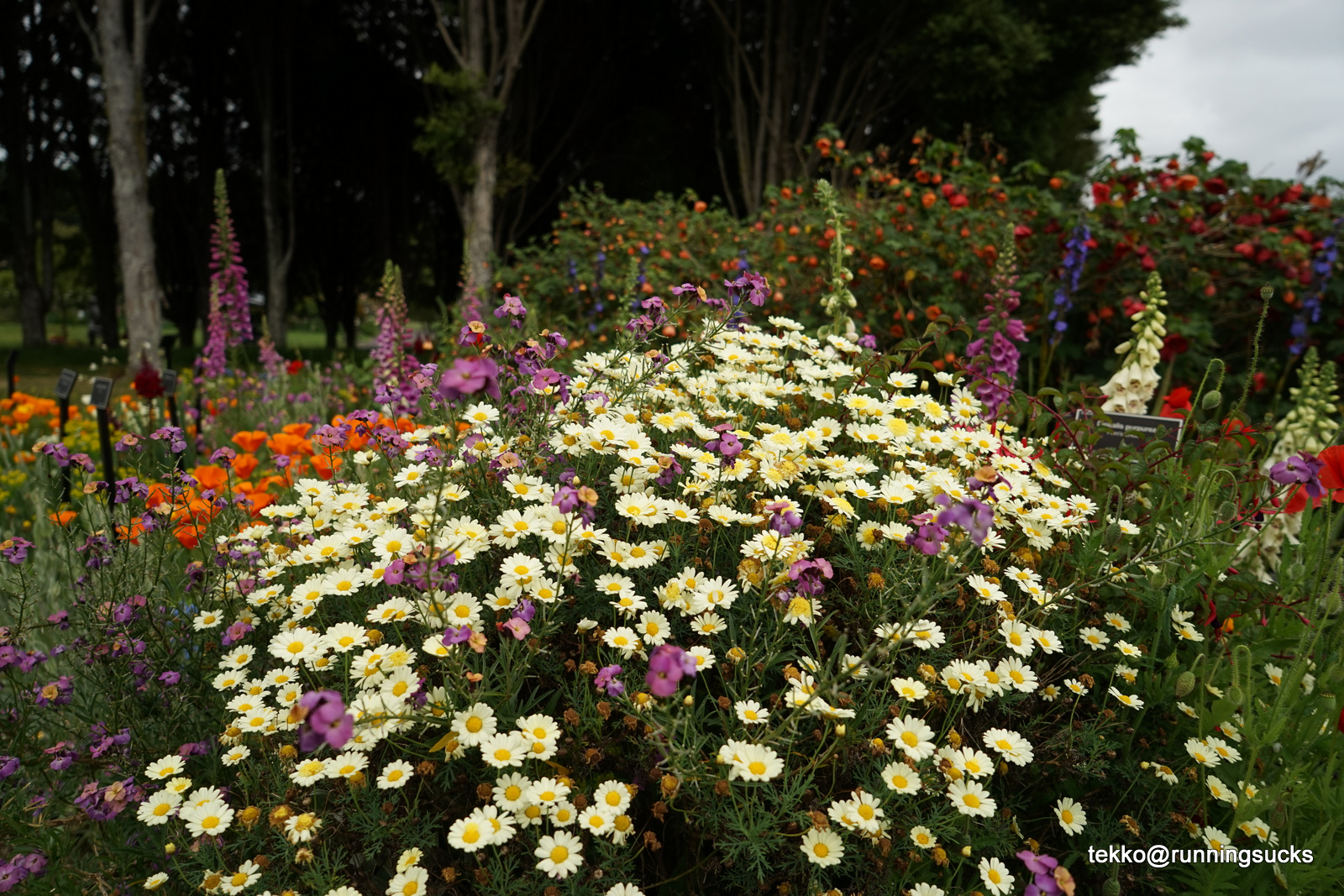 Botanic Garden | RunEatGossip