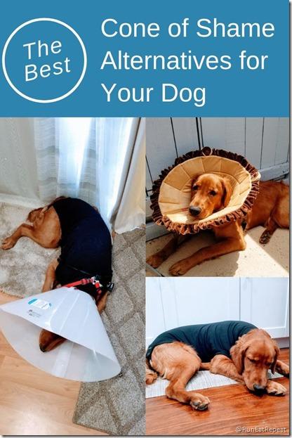 best cone of shame alternatives for dogs (1)