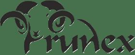 logo runex czarne