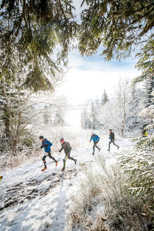 Trail_Hivernal_Sancy-2015_EZYSHOES-®CRESPEAU_DSC6160