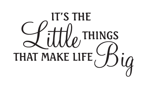 Little things make life big