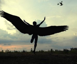 Лечу к тебе на крыльях