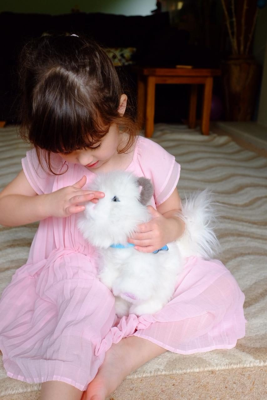 Girl playing with the nose of kitten