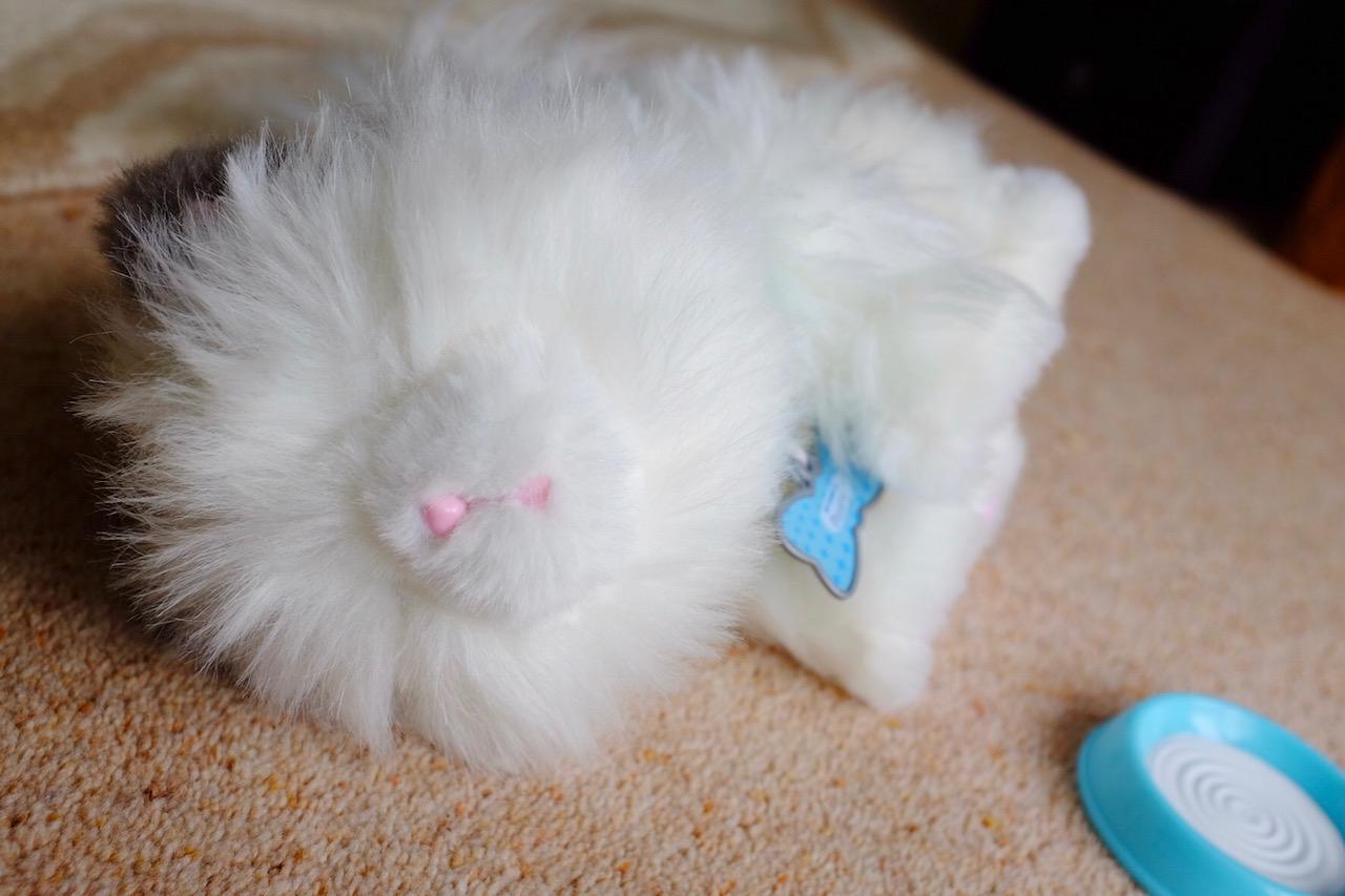 Sleepy Little Lives Kitten Cuddles