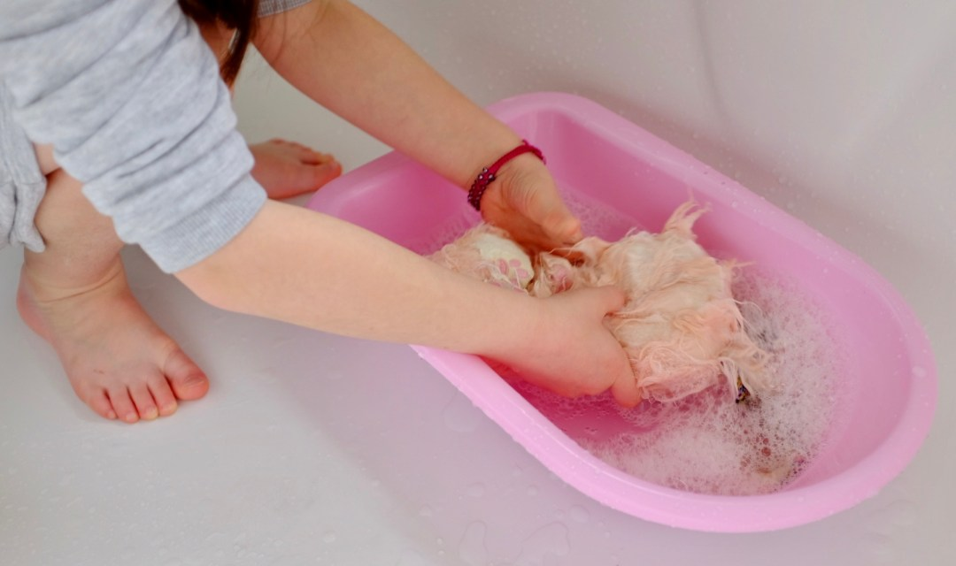 Blossom Bunnies Scruff-a-Luvs washing in a baby bath