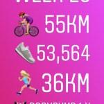 Week 26  – Halfway There