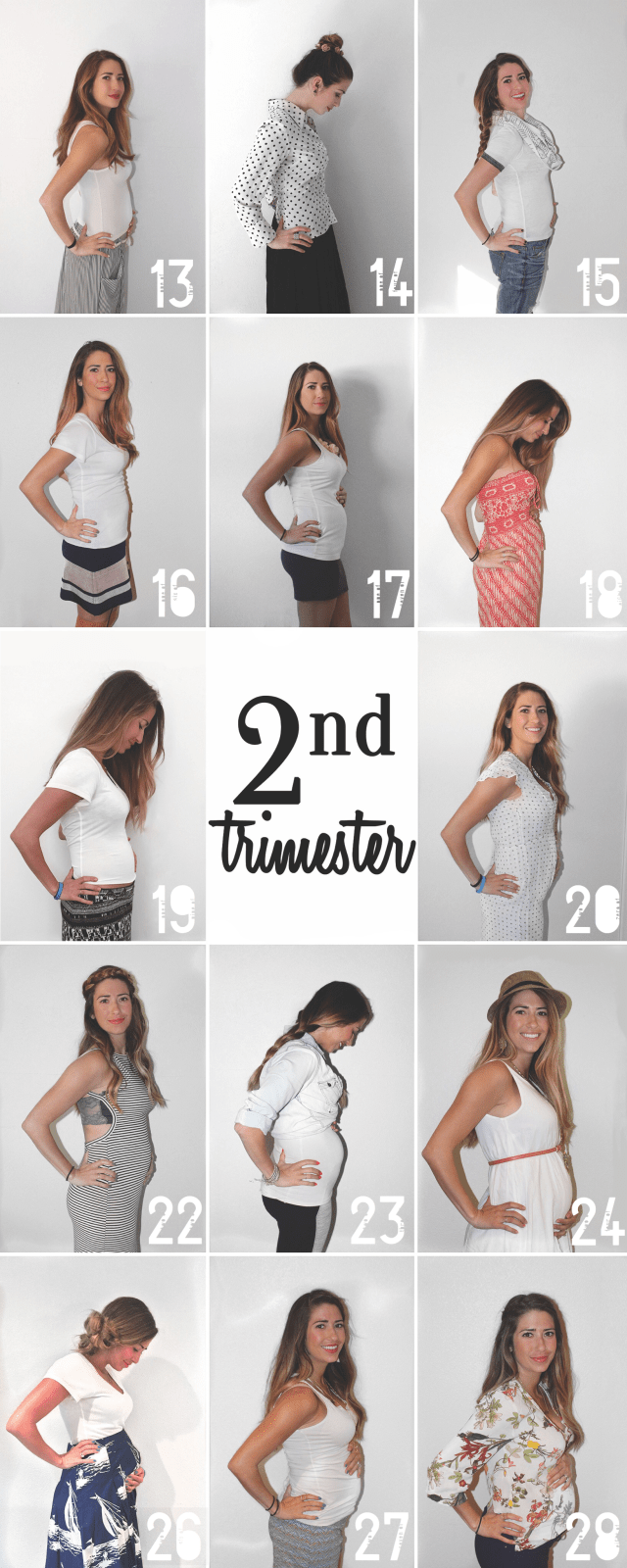second trimester weeks