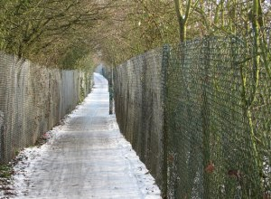 Slippery surfaces, like ice covered paths, can cause a nasty fall. Watch out for them, and treat them with care.
