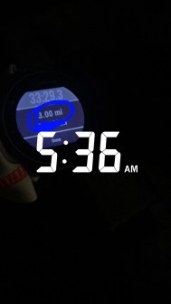 What Happened When I Completed My Workout Every Morning at 4:30 am: How I finally conquered my excuses and succeeding in waking up early and working out in the morning.